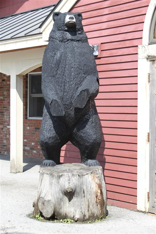 gas station bear